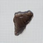 Obsidian fragment