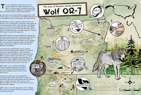 Wolf OR-7 Story Map